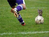 futbolniy_turist