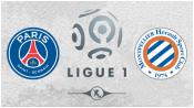 ПСЖ 0 - 0 Монпелье (20 декабря 2014). Обзор матча