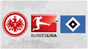 Айнтрахт Франкфурт 2 - 1 Гамбург (28 февраля 2015). Обзор матча